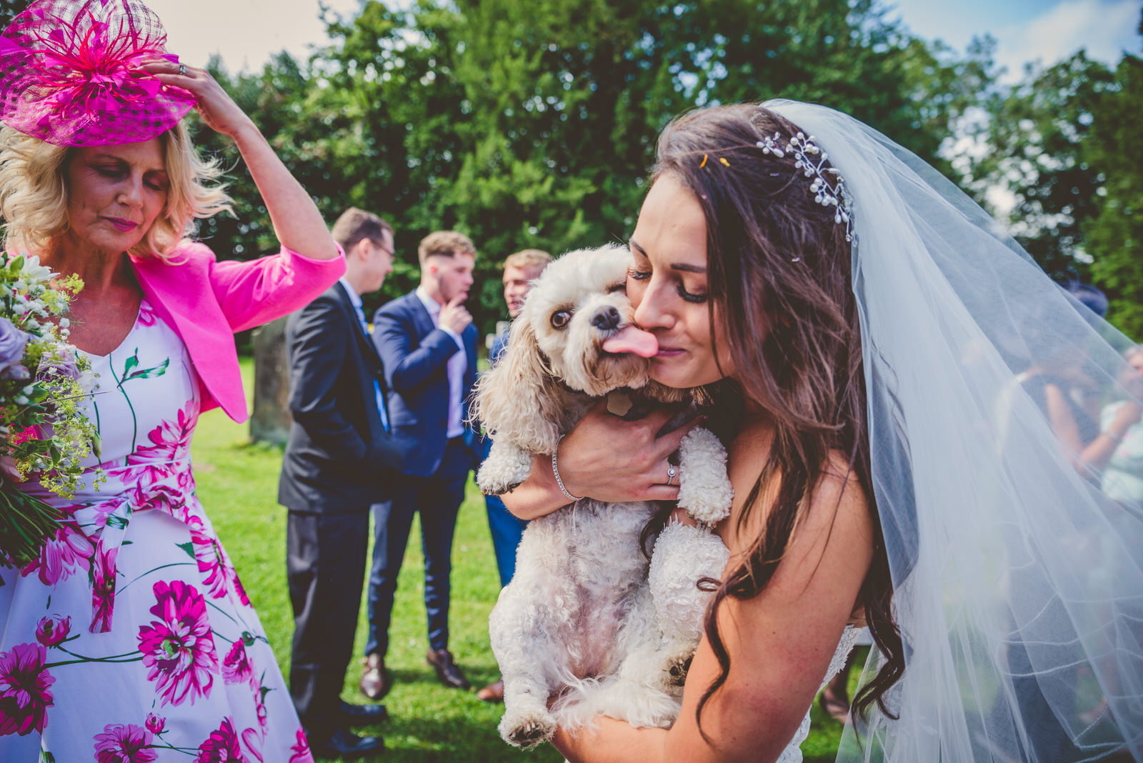 Dog licking bride's face